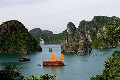 Overview of the Ginger Halong